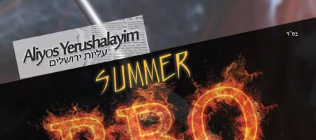 Summer BBQ Icebreaker – 2015